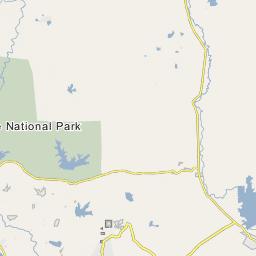 Block I A block of Yala National Park  forest